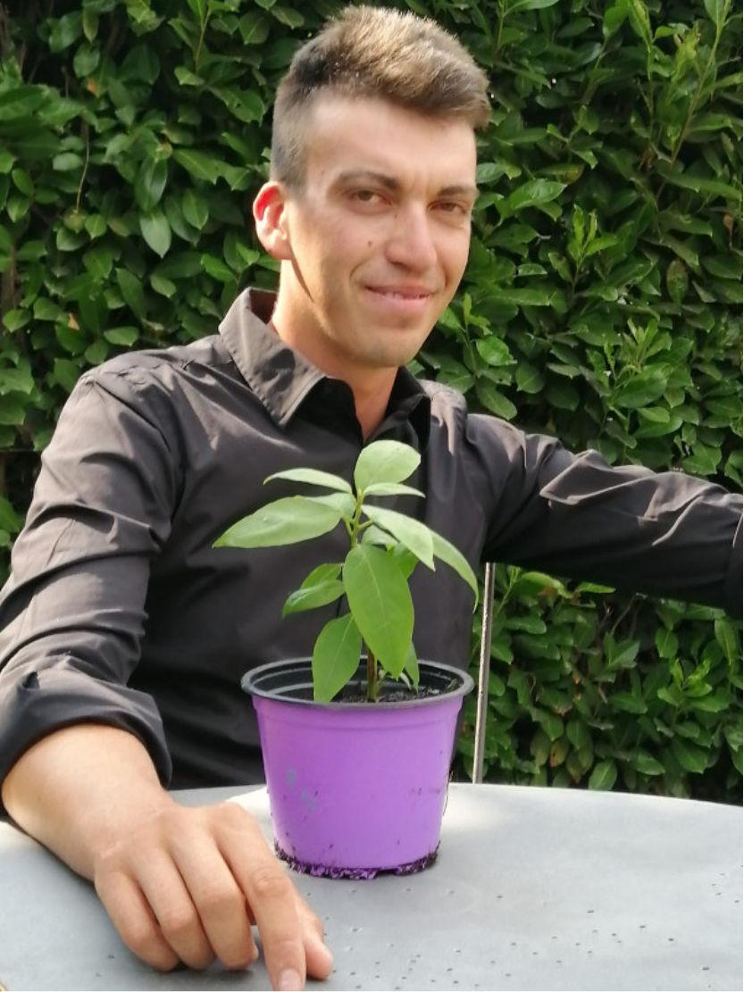 Giorgio Nicolini
